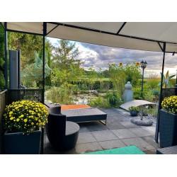 Aussicht Lounge