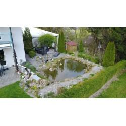 Teich, Lounge, Geräteschuppen, Garten